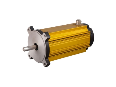110W High Efficiency Micro Brushless DC Motors