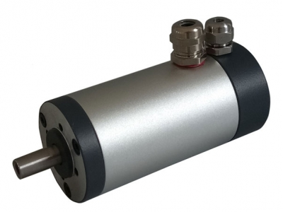 120W 12V DC Small Permanent Magnet Motor