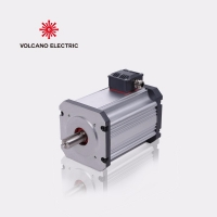 24V Brushless DC Motor 3000rpm for Vehicle